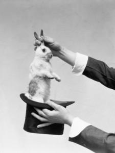 rabbitoutofhat